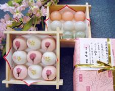 桜饅頭 お花見団子 桜まんじゅう お花見だんご