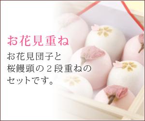 桜 お花見の和菓子ギフト