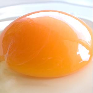 卵のこだわり画像