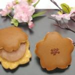 桜どら焼き イメージ1