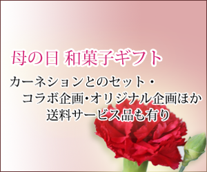 東京 老舗の母の日ギフト和菓子お菓子
