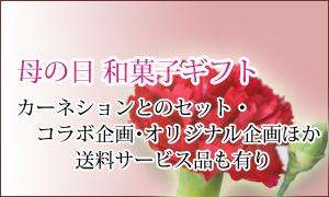 母の日ギフト花カーネーション和菓子お菓子